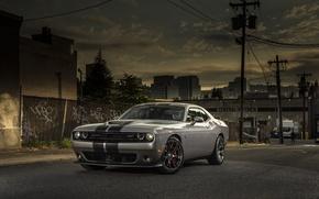 Картинка Dodge, Challenger, street, 392, SRT, 2015