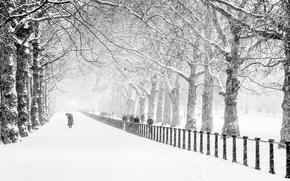 Картинка парк, снег, зима, дорога, деревья, Лондон, люди, город