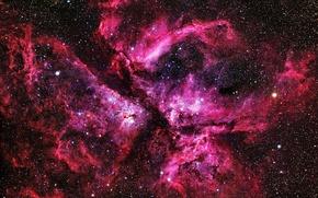 Обои туманность, звезды, nebula