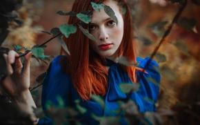 Картинка взгляд, листья, лицо, модель, волосы