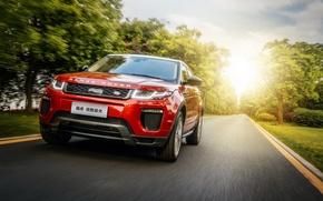 Обои Evoque, HSE Dynamic, свет, Land Rover, Range Rover, дорога, автомобиль, солнце