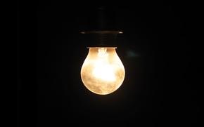 Картинка Лампочка, Черная, Свет