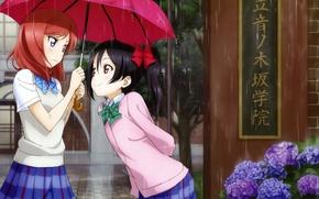 Картинка девушки, дождь, зонт, аниме, арт, школьницы, yazawa nico, love live! school idol project, nishikino maki, ...