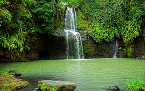Обои водопад, скала, кусты, зелень, камни