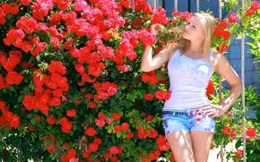 Обои цветы, поза, лето, фигура, блондинка, сад, красные, розы, майка, шорты, девушка, куст, солнце, Alessandra A, ...