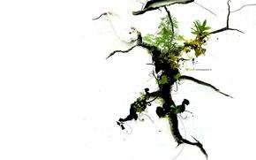 Обои упрямство, корни, ростки, жизнь, трещины