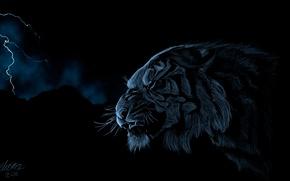 Картинка тигр, молния, хищник, голова, арт