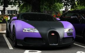 Обои veyron, кар, парковка, спорт, bugatti, деревья, сиреневый, машины, улица, авто., черно