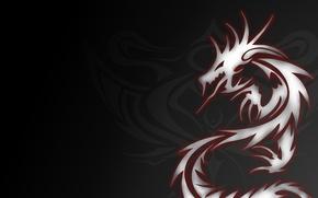 Обои дракон, тату, серый