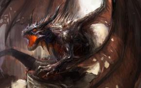 Картинка фентези, дракон, Арт