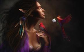 Картинка цветок, девушка, птицы, настроение, эльф, перья