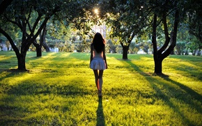 Картинка брюнетка, парк, девушка, закат