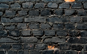 Картинка wall, white, black, bricks, pattern
