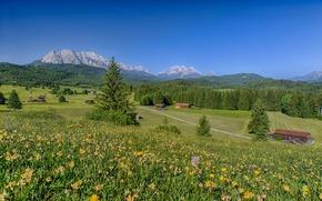 Картинка цветы, луга, Бавария, Альпы, горы, Bavaria, Germany, Германия, дома, пейзаж, Alps, лес