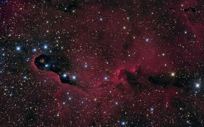 Картинка космос, туманность, nebula, Elephant's Trunk