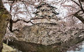 Картинка вода, отражения, деревья, камни, весна, Япония, сакура, кладка, пагода, водоем, цветущая, Хиросаки, обои от lolita777