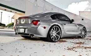 Обои BMW, стена, листья