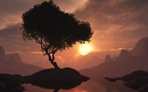 Картинка закат, дерево, вечер, островок