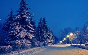 Картинка зима, дорога, снег, пейзаж, парк, вечер, ели, фонари, аллея