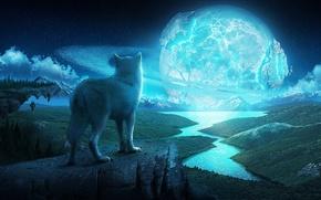 Картинка звезды, ночь, река, скалы, планета, волк, кольца, арт
