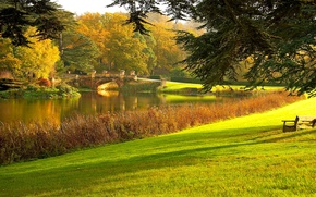 Обои парк, лужайка, деревья, трава, пруд