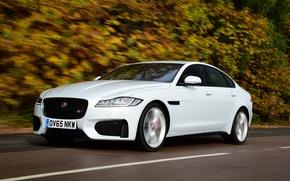 Обои Jaguar, XF S, скорость, авто, дорога, ягуар