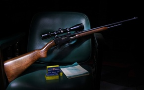 Картинка оптика, ружье, 121, Remington