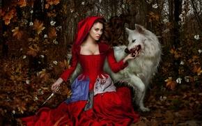 Картинка сказка, blood, фэнтази, forest, smile, wolf, look, actress, fairytale, Красная шапочка, Red Hood, dagger, Blanca …