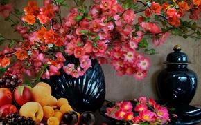 Картинка Цветы, ваза, натюрморт