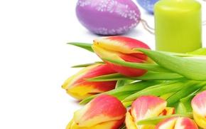 Картинка цветы, Tulips, тюльпаны, Пасха, Easter, свеча, Candles, весна