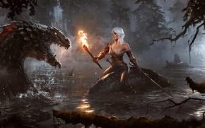 Картинка вода, ночь, озеро, женщина, меч, факел, чудовище, witcher, The Witcher 3: Wild Hunt, Lion Cub ...