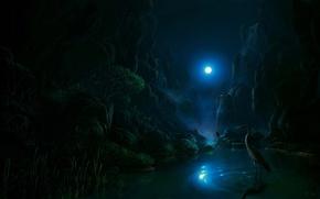Картинка луна, цапля, ночь, Fel-X