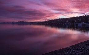 Картинка лес, закат, тучи, природа, берег, USA, California, озеро Тахо, Tahoe City