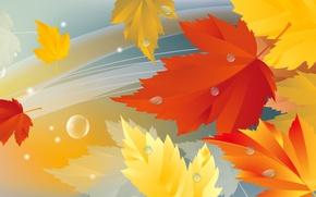 Картинка осень, листья, природа, коллаж