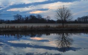 Картинка поле, лес, небо, облака, деревья, тучи, отражение, река, поляна, Вечер