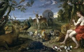 Картинка звери, живопись, Арт, золотой век, лира