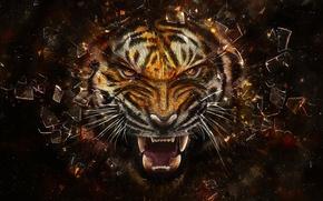 Обои тигр, стекло, осколки
