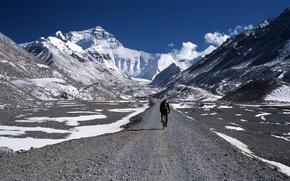 Картинка горы, природа, спорт, велосипедист