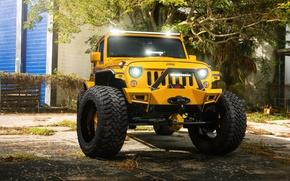 Обои Front, Forged, Yellow, Custom, Wrangler, Jeep, Wheels, Track, HydraSports, Amani