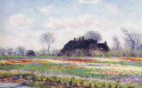 Картинка пейзаж, цветы, картина, Клод Моне, Поля тюльпанов в Сассенхейме близ Лейдена