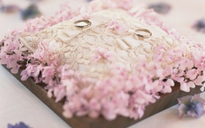 Картинка фон, розовый, обои, кольца, подушка, свадьба, праздники, обручальные
