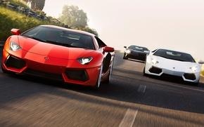 Картинка машина, авто, белый, красный, движение, черный, суперкар, Ламборгини, Lamborghini Aventador LP700