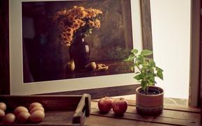 Картинка фотография, яблоки, растение, яйца, рамка, натюрморт, горшочек, обои от lolita777