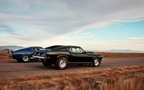 Картинка mustang, ford, muscle car, lunchbox photoworks, drag race