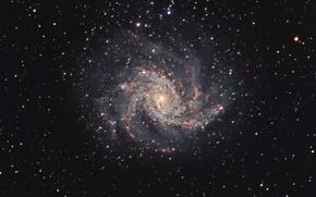 Картинка Лебедь, Фейерверк, спиральная галактика, в созвездии