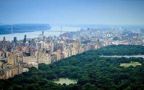Картинка city, USA, United States, river, skyline, trees, bridge, New York, Center, Park, Manhattan, view, tree, ...