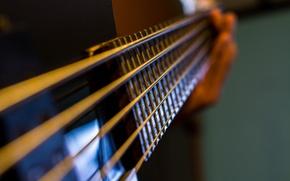 Картинка макро, музыка, гитара, струны