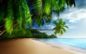 Картинка песок, море, пляж, небо, солнце, тропики, пальмы, океан, берег, summer, sunshine, beach, sky, sea, ocean, …