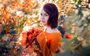 Картинка осень, девушка, природа, листва
