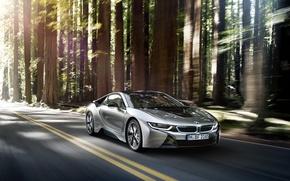 Картинка car, авто, лес, бмв, в движении, BMW i8